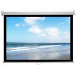 Экран ScreenMedia Economy-P 180x180