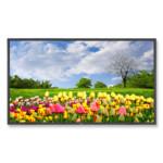 LED / LCD панель NEC MultiSync® X462HB