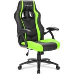 Компьютерная мебель Sharkoon Shark Skiller SGS1 Black/Green