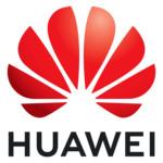 Лицензия для сетевого оборудования Huawei 02352UNK_88134UFA-4GX_12