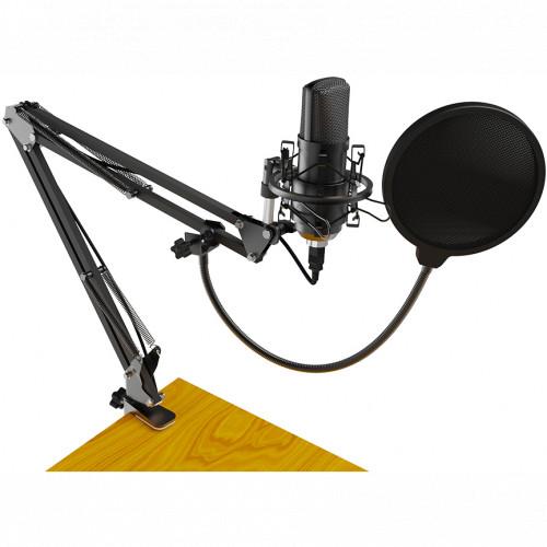 Микрофон Ritmix RDM-169 USB Black (RDM-169 USB Black)
