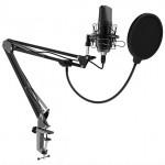 Микрофон Ritmix RDM-169 USB Black