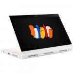 Ноутбук Acer ConceptD 3 Ezel CC314-72G-530R