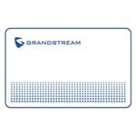 Опция для Видеоконференций Grandstream Карта GDS37x0-CARD
